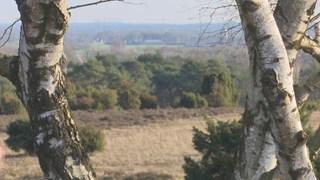 Meetpunt van ammoniak op de Lemelerberg waar de uitstoot erg hoog is