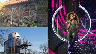 Goed nieuws: The Voice Kids, bijen en een telescoop