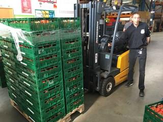 Elf ton tomaten voor de voedselbanken in Overijssel