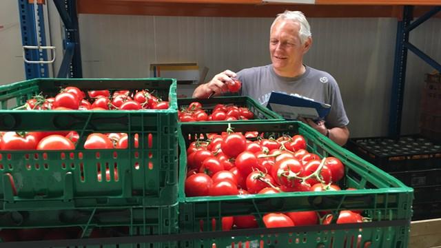 Elf ton tomaten voor de voedselbanken in Overijssel - fotograaf: RTV Oost