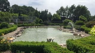Vogelpark De Lorkeershoeve in Oud Lutten