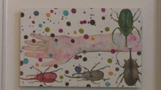 Teloorgang insectenpopulatie akelig actueel in expositie Helen Abma