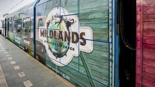Wildlandstrein