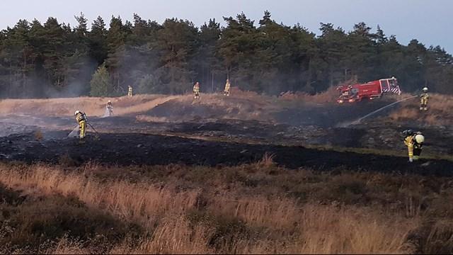 Natuurbrand in Dalfsen - fotograaf: Persbureau Meter