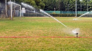 De Enschedese velden gaan tot eind augustus op slot