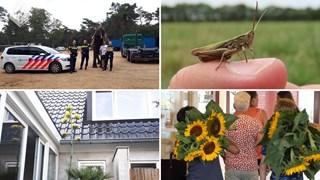 Goed nieuws: Dieren, planten en een recordomzet