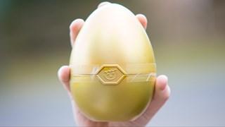 Zoek mee naar de 20 verstopte eieren van RTV Oost!