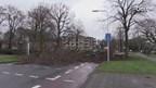 Dode door storm in Ensched