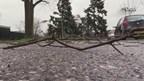Veel meldingen in Hengelo na stormschade