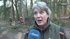 Video: paden vrijmaken op Sallandse Heuvelrug