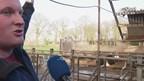 ingestorte koeienstal in Bentelo; alle 70 koeien ongedeerd