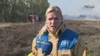 Videoreportage heidebrand Tubbergen