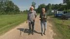 Video: Schaapherder Henk van der Sar uit Schuinesloot
