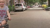 Ganzen in Deventer op diervriendelijke wijze gevangen