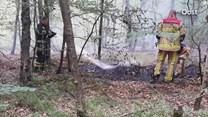 Scooter in brand gestoken in Enschede